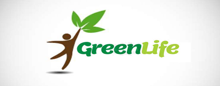 About Green Life IT
